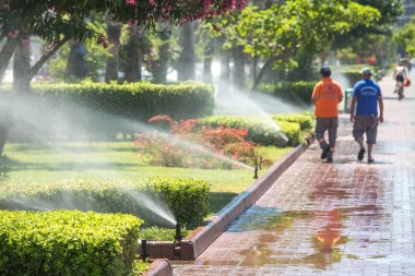 Automated watering system in the Park. Watering grass, trees and shrubs