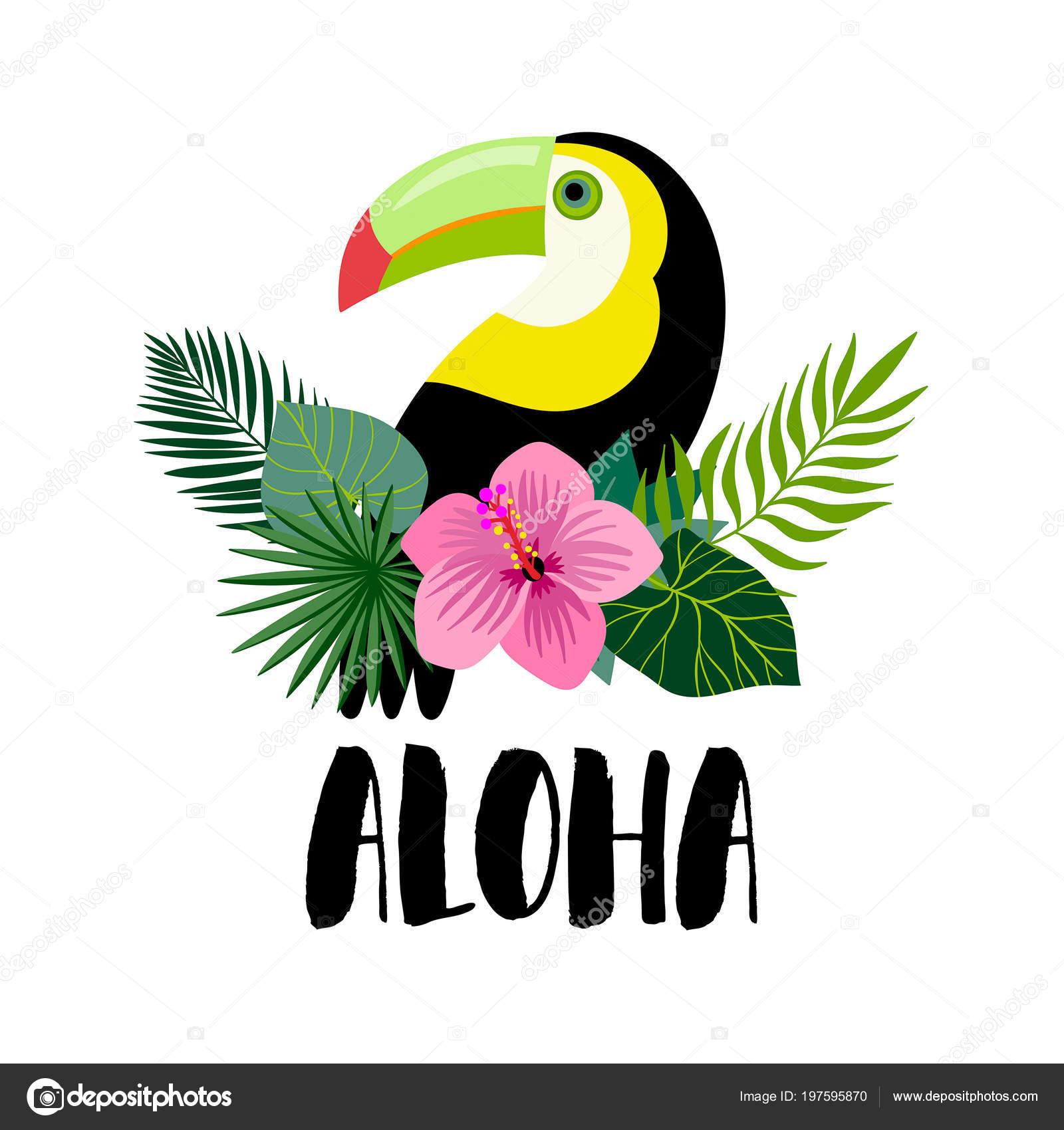 aloha invitation design toucan exotic plants hand lettering stock