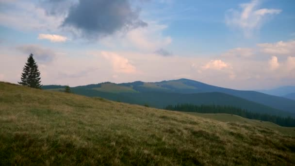 Festői panorámával a hegy tetejére. Kárpát-hegység csúcsai. Felhők erdő rétek fű