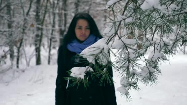 Női kéz érinti fenyő fa ágak hóval borított. Üdülés nyaralás gyalogos túra a téli erdő alatt havazás. A fa Időjárás fagy. Lassú mozgás 60 fps