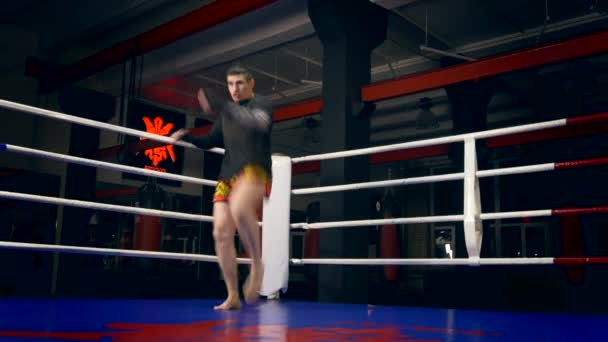 Muay Thai-Boxer Ausbildung Schläge und Tritte im Boxen Ring in städtischen Turnhalle. Schattenkampf. Punch Taschen dunklen Hintergrund