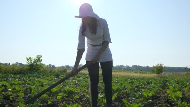 Bäuerin beim Kohlanbau. Unkraut mit der Hacke auf dem Hof beseitigen