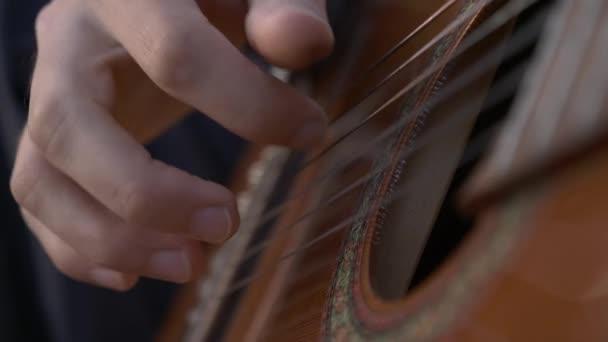 Detailní-up muzikant hraje na kytaru na přírodě, zatímco sedí mezi poli. 4K HDR