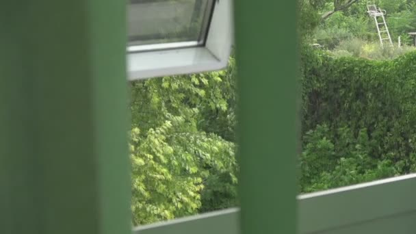 View from the half-open window through the developing blinds to rain and wind
