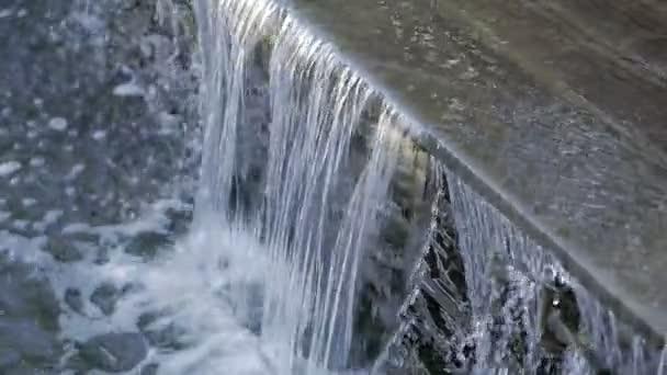 Plovoucí vodní v umělé jezírko v městském parku