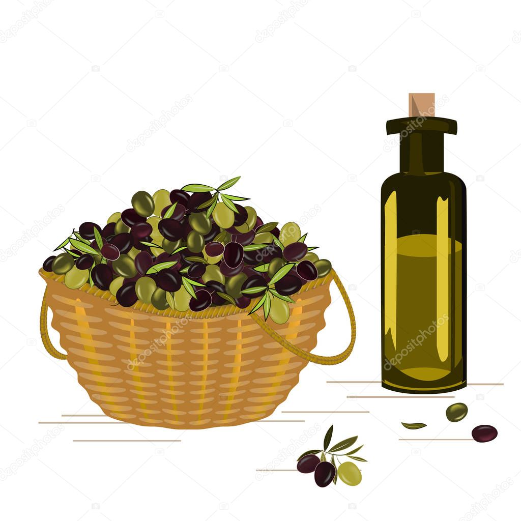 Vector basket with ripe olives harvest and the gleass bottle with olive oil