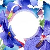 Fotografie Orchid blue vanda. Floral botanical flower. Frame border ornament square. Aquarelle wildflower for background, texture, wrapper pattern, frame or border.