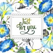 Fényképek Ipomoea kék. Virágos botanikai virág. Test határ Dísz tér. A háttér textúra, burkoló minta, keret vagy határ Aquarelle vadvirág