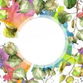 Fényképek Zöld nyírfa levelek. Leveles növény botanikus kert virágos lombozat. Test határ Dísz tér. Az Aquarelle levél a háttér textúra, burkoló minta, keret vagy határ