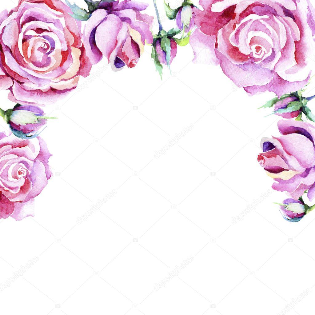 Delicate pink rose. Floral botanical flower. Frame border ornament square.