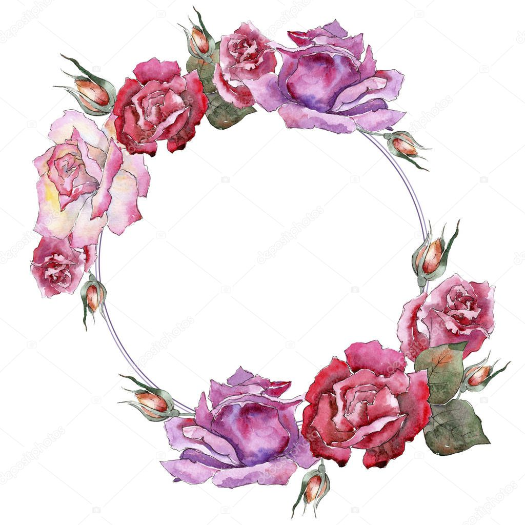 Colorful roses. Floral botanical flower. Frame border ornament square.