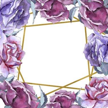 Colorful rose. Floral botanical flower. Frame border ornament square.