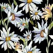Fotografie White daisy flower. Floral botanical flower. Seamless background pattern. Fabric wallpaper print texture. Aquarelle wildflower for background, texture, wrapper pattern, frame or border.