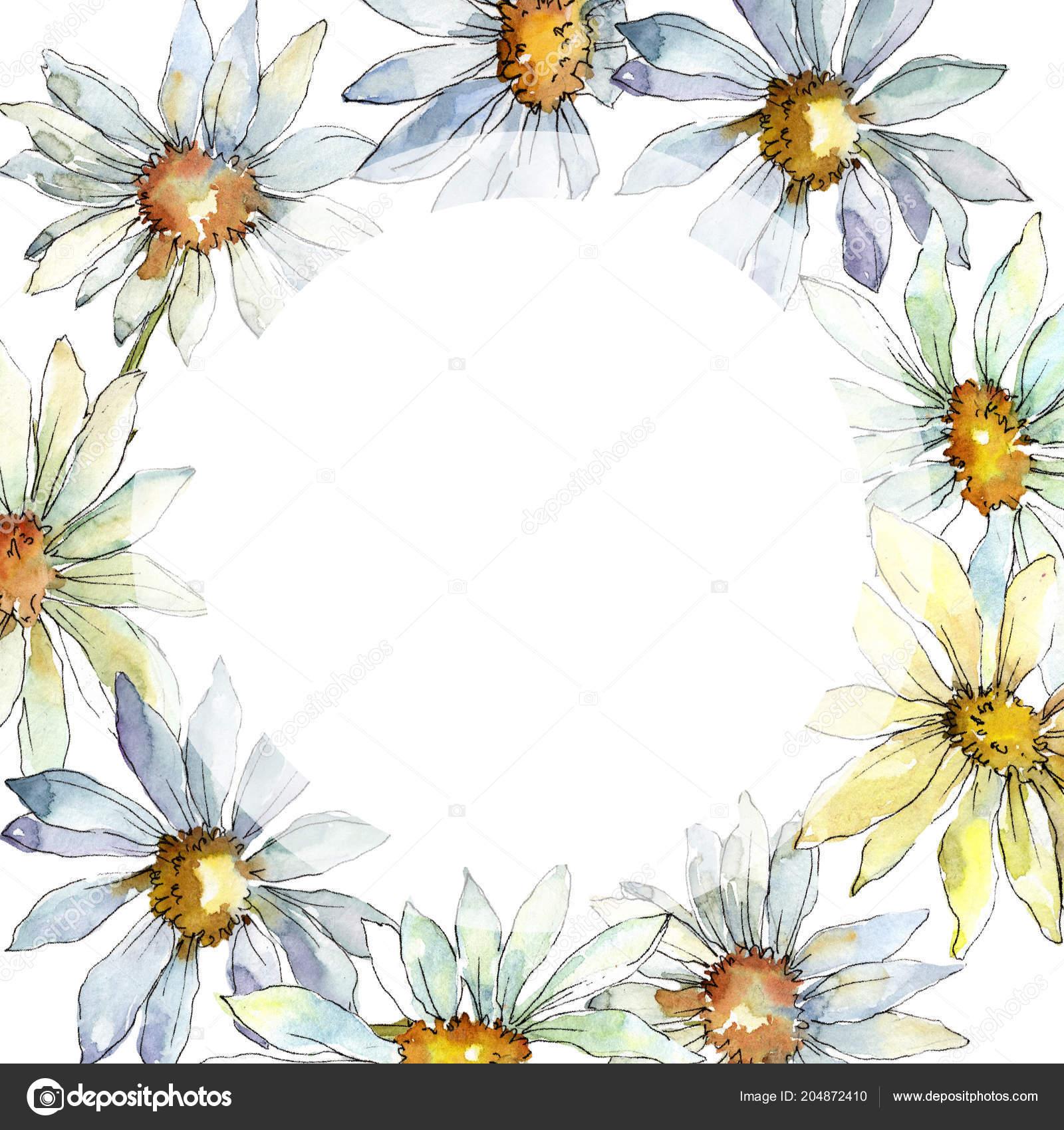 White daisy flower floral botanical flower frame border ornament white daisy flower floral botanical flower frame border ornament square stock photo izmirmasajfo