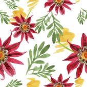 Piros gazania virág. Virágos botanikai virág. Varratmentes háttérben minta.