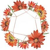 Akvarell narancssárga gazania virágok. Virágos botanikai virág. Test határ Dísz tér.