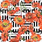 Akvarell narancssárga gazania virágok. Virágos botanikai virág. Varratmentes háttérben minta.