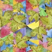 Fotografie Akvarelu zelené a červené javorové listy. Listy rostlin Botanická zahrada květinové listy. Vzor bezešvé pozadí. Fabric tapety tisku texturu. Aquarelle list pro pozadí, textura, wrapper vzorem