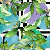 Fotografia Acquerello elaeagnus verde foglie. Fogliame floreale foglia pianta giardino botanico. Reticolo senza giunte della priorità bassa. Struttura di stampa carta da parati di tessuto. Foglia di Aquarelle per sfondo, texture, pattern di wrapper.