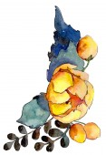 Akvarell színes csokor virág. Virágos botanikai virág. Elszigetelt ábra elemet. A háttér textúra, burkoló minta, keret vagy határ Aquarelle vadvirág