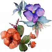 Akvarell színes csokor virág. Virágos botanikai virág. Elszigetelt ábra elemet. A háttér textúra, burkoló minta, keret vagy határ Aquarelle vadvirág.