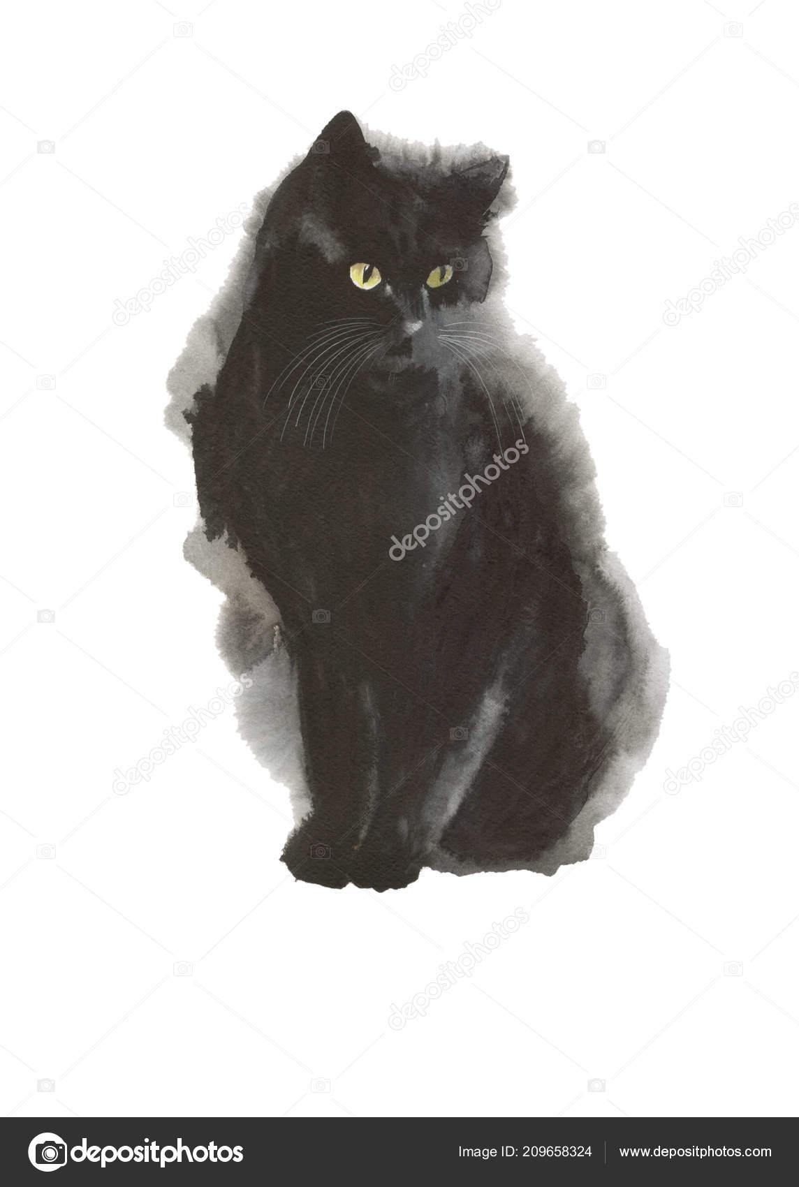 Animal Sauvage Chat Noir Dans Style Aquarelle Isolé Nom