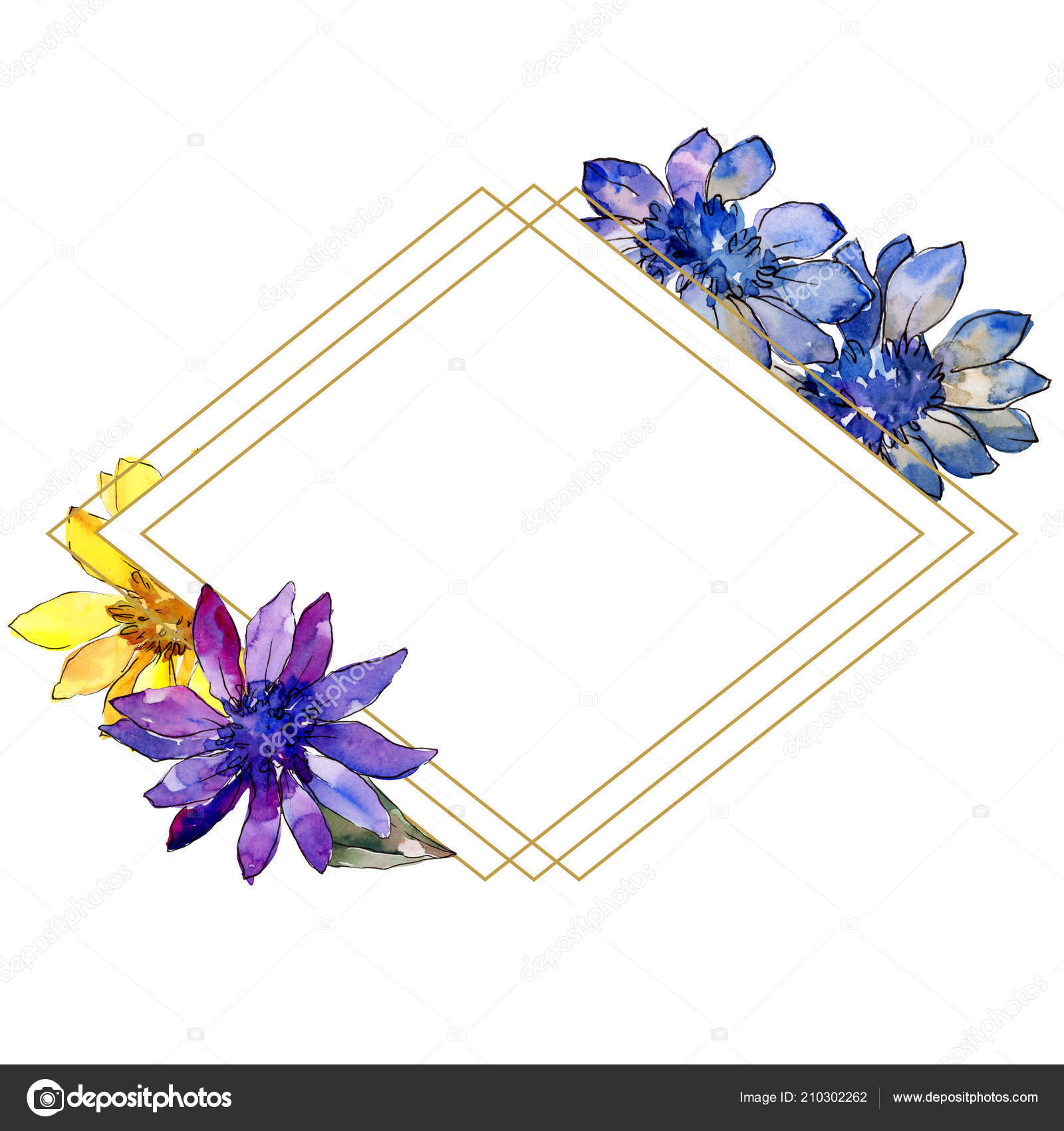 Watercolor colorful african daisy flower floral botanical flower watercolor colorful african daisy flower floral botanical flower frame border stock photo izmirmasajfo
