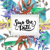 Foglie di felce. Fogliame floreale foglia freno pianta giardino botanico. Quadrato di ornamento del bordo cornice. Foglia di Aquarelle per sfondo, texture, pattern di wrapper, telaio o bordo.