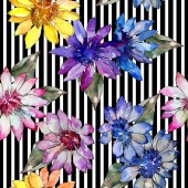 Fotografie Watercolor colorful african daisy flower. Floral botanical flower. Seamless background pattern. Fabric wallpaper print texture. Aquarelle wildflower for background, texture, wrapper pattern, border.