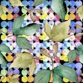 Fotografia Foglie di acero verdi. Fogliame floreale foglia pianta giardino botanico. Reticolo senza giunte della priorità bassa. Struttura di stampa carta da parati di tessuto. Foglia di Aquarelle per sfondo, texture, pattern di wrapper, telaio o bordo