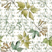 Green maple leaves. Leaf plant botanical garden floral foliage. Seamless background pattern. Fabric wallpaper print texture. Aquarelle leaf for background, texture, wrapper pattern, frame or border.