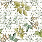 Fotografie Zelené javorové listy. Listy rostlin Botanická zahrada květinové listy. Vzor bezešvé pozadí. Fabric tapety tisku texturu. Aquarelle list pro pozadí, textura, souhrnný vzorek, rám nebo hranice
