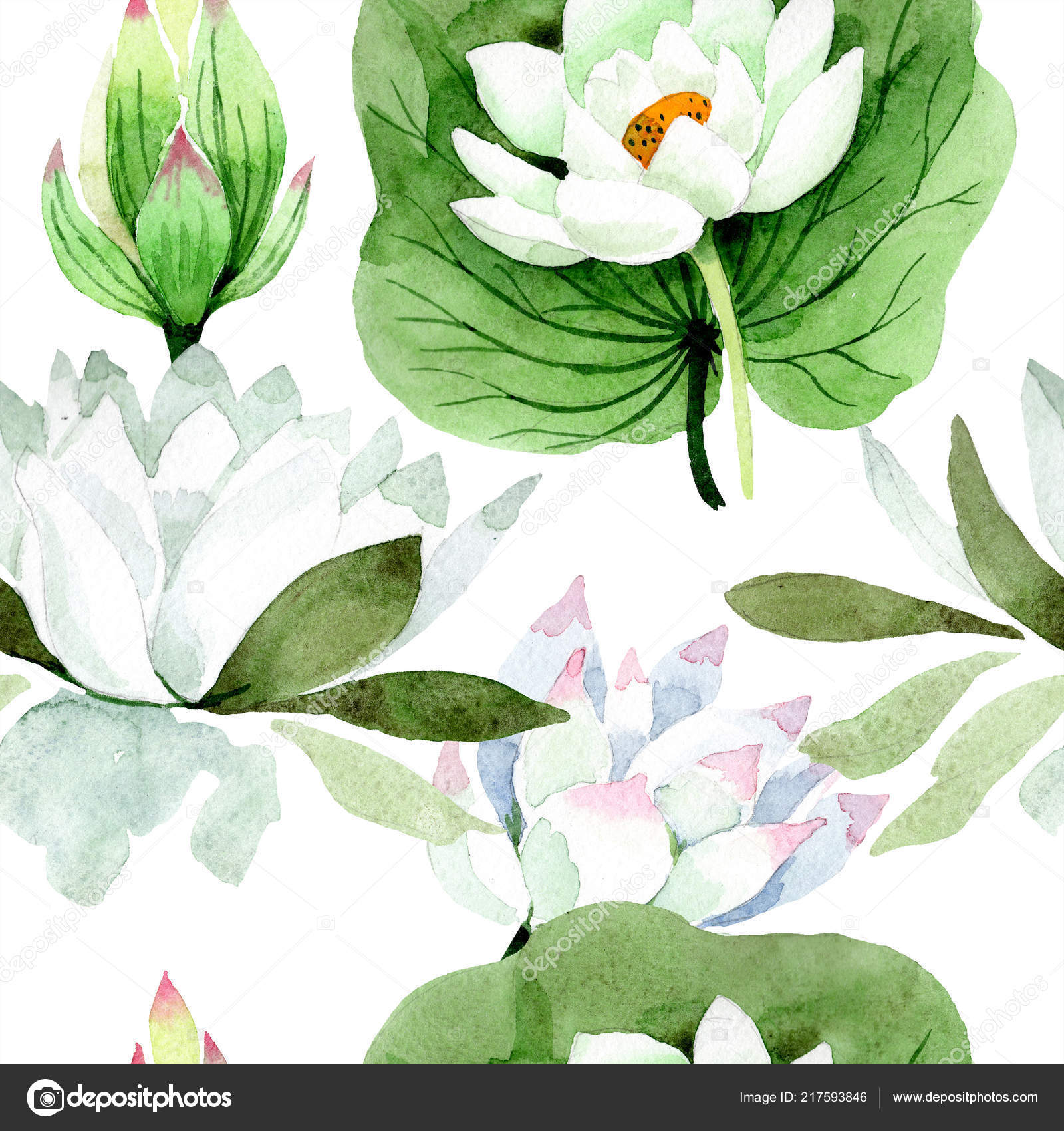 Watercolor White Lotus Flower Floral Botanical Flower Seamless