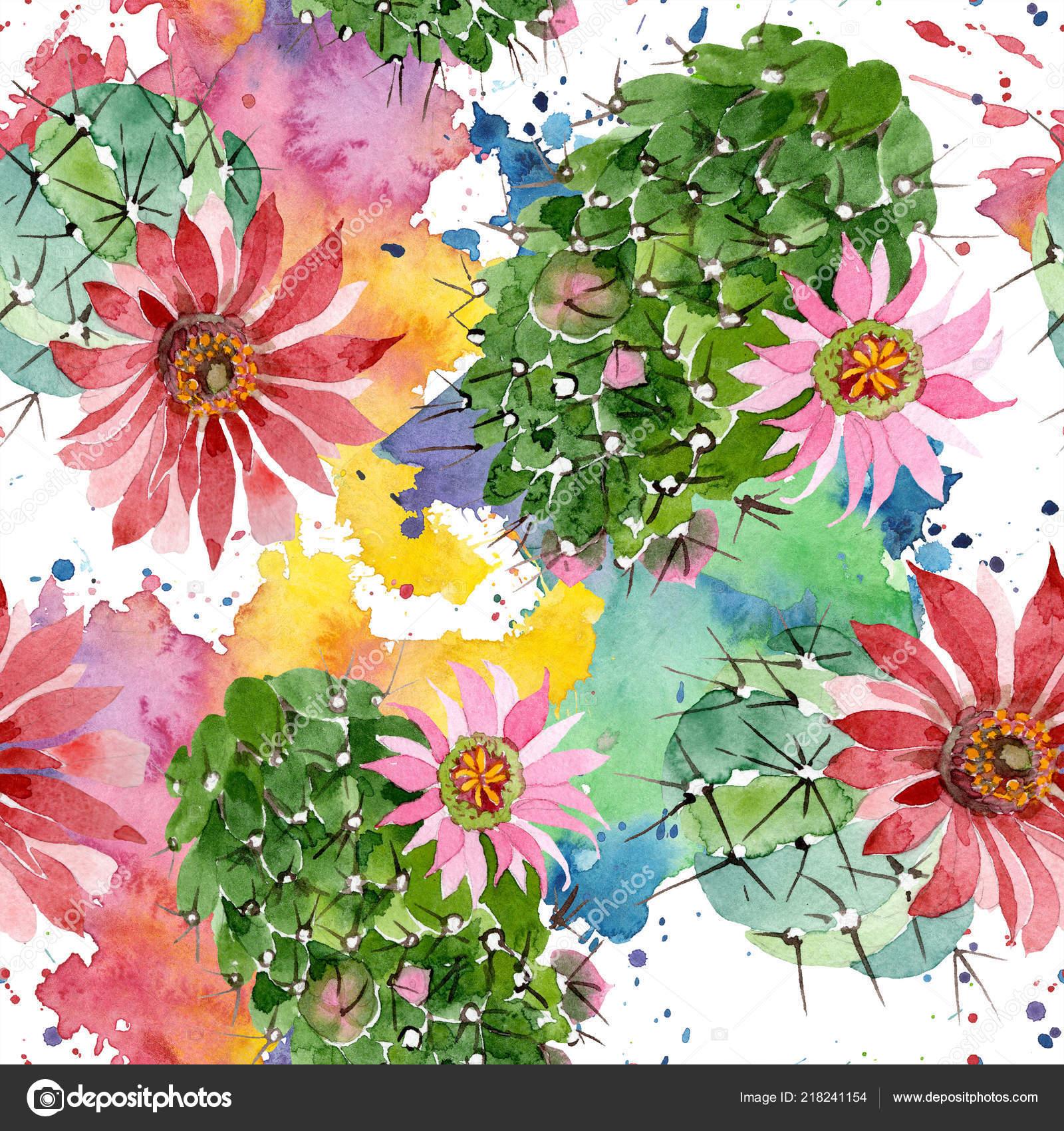 Aquarelle Vert Cactus Avec Une Fleur Rose Fleur Botanique Floral