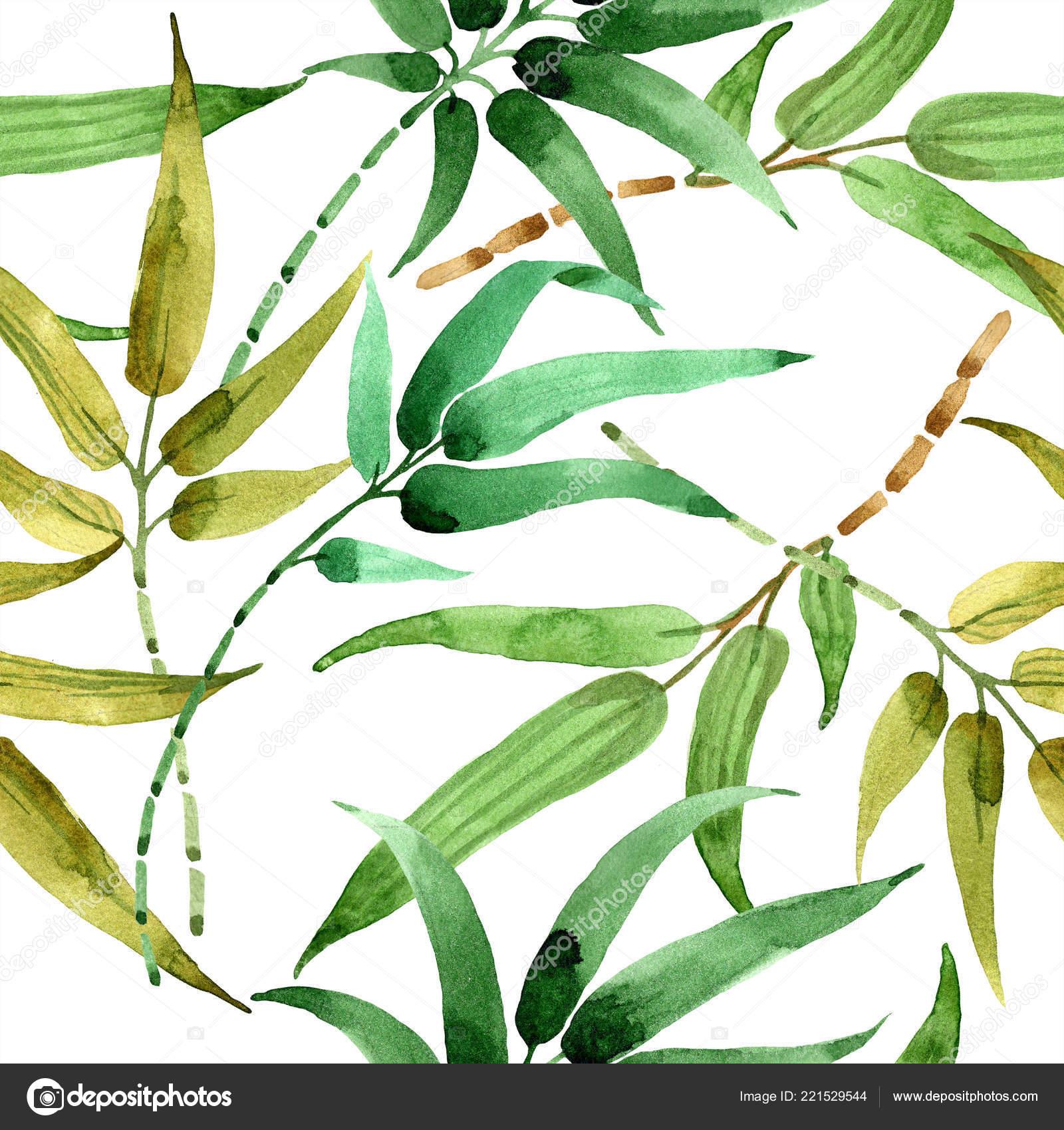 La Foglia Di Bamb.Foglia Di Bambu Verde Fogliame Floreale Foglia Pianta