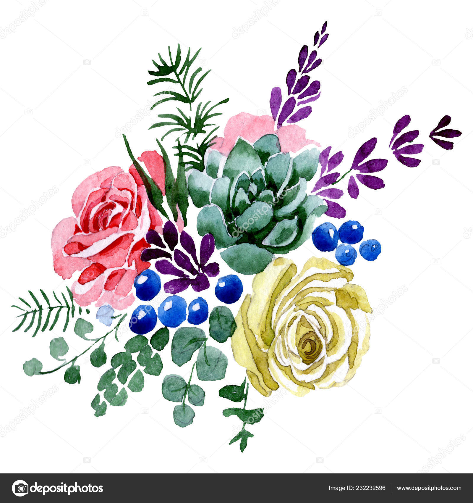 Succulent And Rose Bouquet Flowers Watercolor Background Illustration Set Isolated Bouquet Illustration Element Stock Photo Image By C Mystocks 232232596