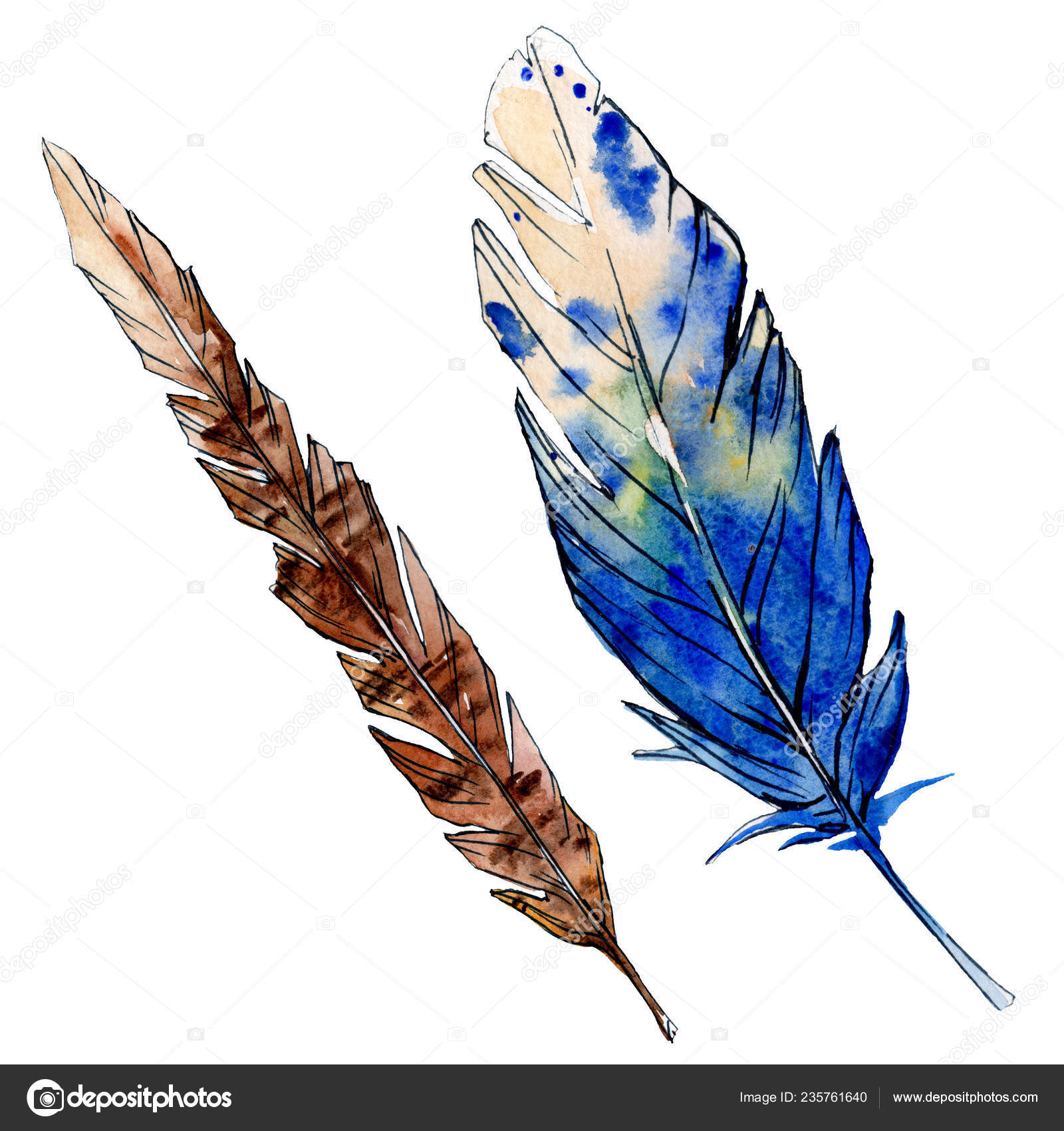 Watercolor Brown And Blue Bird Feather From Wing Isolated