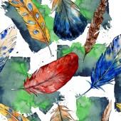 Akvarelu ptačí pírko z křídla, samostatný. Vzor bezešvé pozadí.