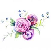 Rózsaszín rózsa botanikai virág virág. Akvarell háttér illusztráció készlet. Elszigetelt csokor ábra elem.