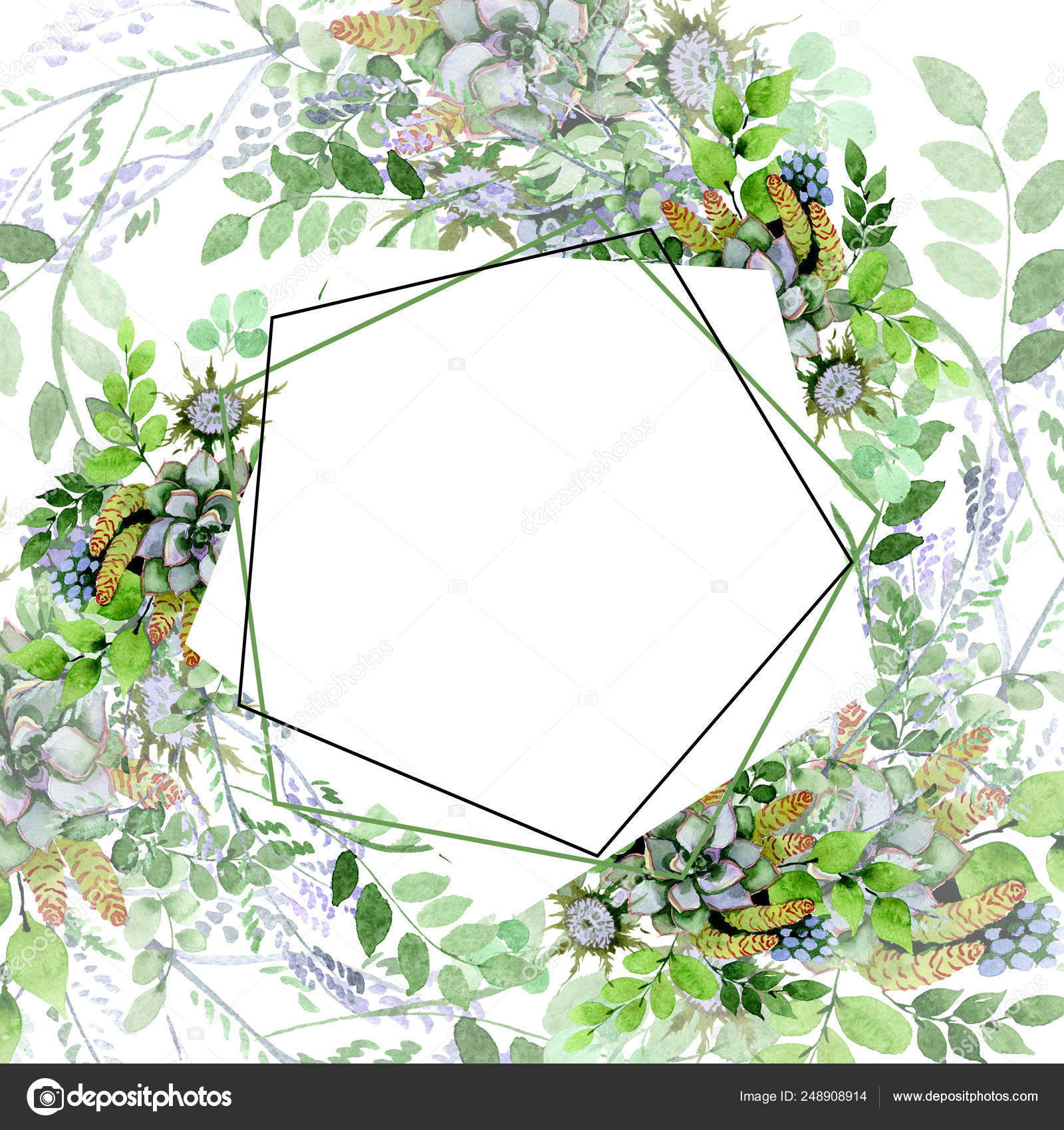Succulent Bouquet Floral Botanical Flowers Watercolor Background Illustration Set Frame Border Ornament Square Stock Photo Image By C Mystocks 248908914