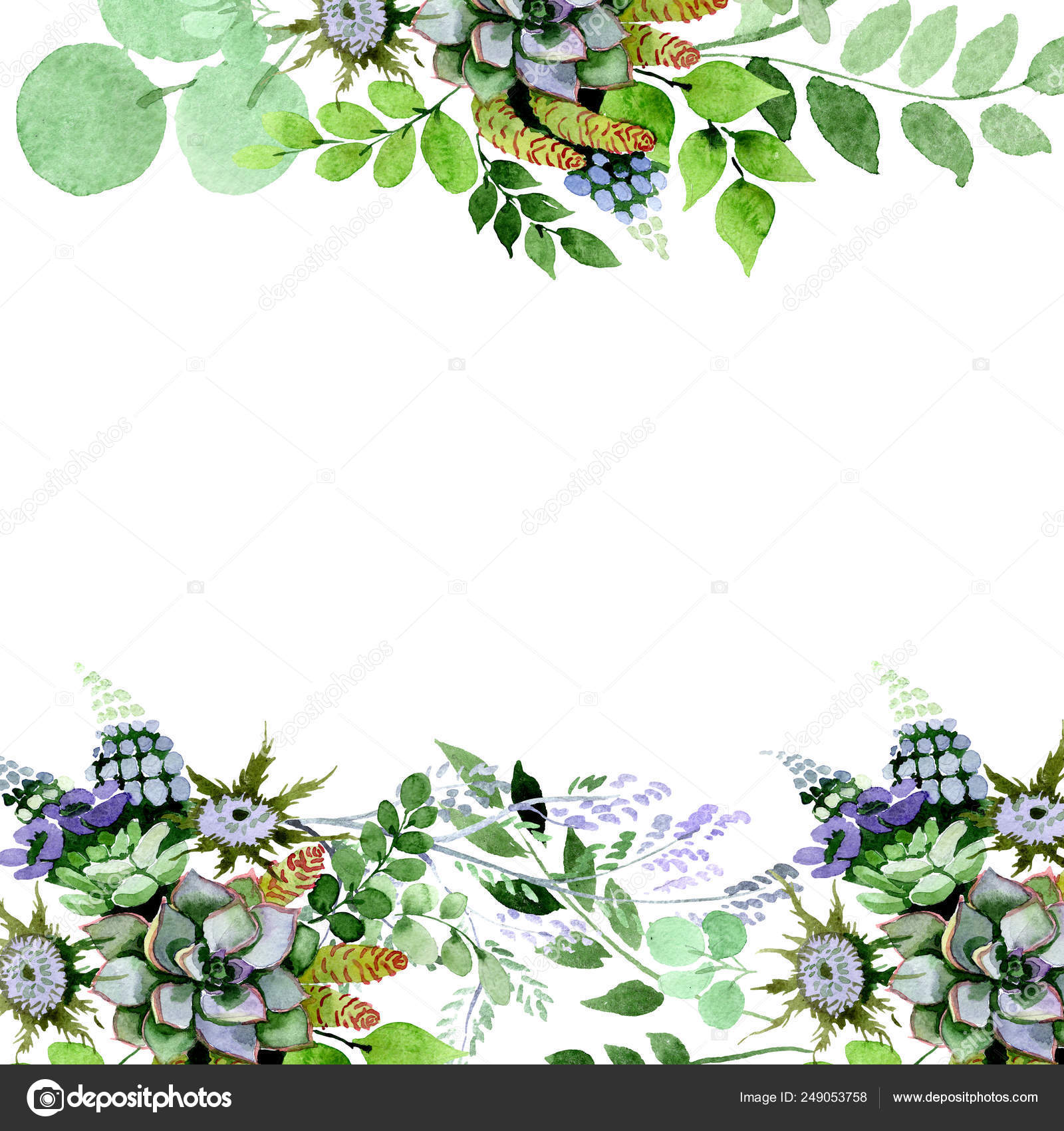 Succulent Bouquet Floral Botanical Flowers Watercolor Background Illustration Set Frame Border Ornament Square Stock Photo Image By C Mystocks 249053758