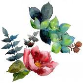 Csokor összetétele botanikai virág virágok. Akvarell háttér beállítása. Elszigetelt csokor ábra elem.