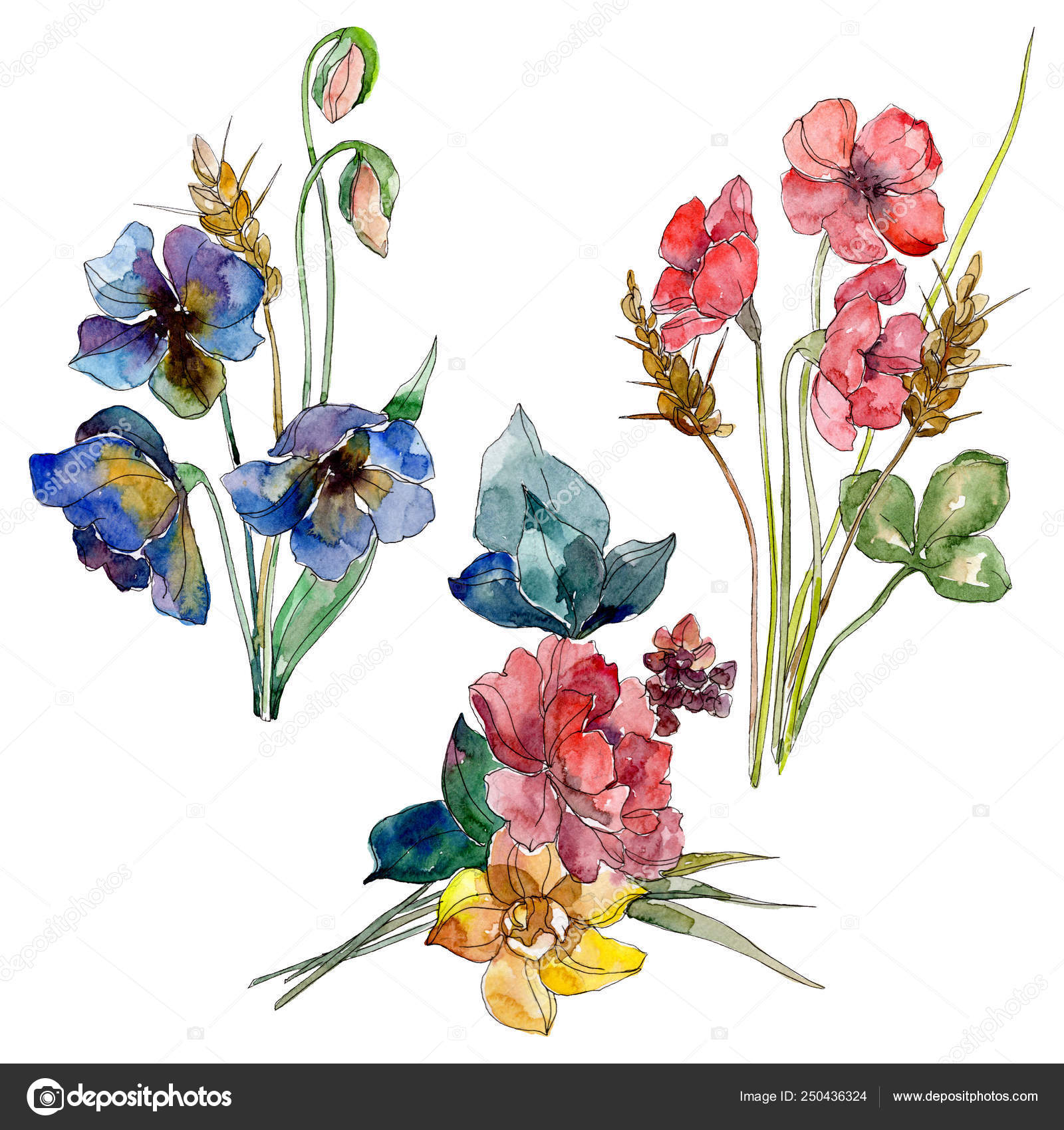 Wildflower Bouquet Floral Botanical Flowers Wild Spring Leaf Wildflower Watercolor Stock Photo Image By C Mystocks 250436324