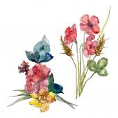 Vadvirág csokor virág botanikai virágok. Vad tavaszi levél vadvirág. Akvarell háttér illusztráció készlet. Akvarell rajz divat aquarelle. Elszigetelt vadvirág ábra elem.