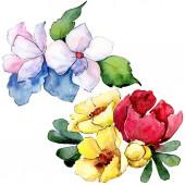 Csokorkészítés virág botanikai virágok. Akvarell háttér illusztráció készlet. Elszigetelt csokor ábra elem.