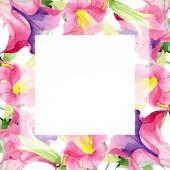 Pink Brugmansia virágos botanikai virágok. Akvarell háttér illusztráció meg. Keretszegély Dísz tér.