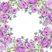 Fényképek Lila Rózsa csokor virág botanikai virágok. Akvarell háttér illusztráció készlet. Test határ Dísz tér.