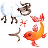 Horoskop Sternzeichen, Astrologie-Symbol. Aquarell Hintergrund Set vorhanden. isolierte Tierkreisdarstellungselemente.