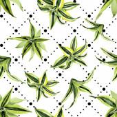 Drenská zelená listí. Botanická listová rostlina. Akvarel na obrázku. Bezespání vzorek pozadí.