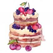 Chutný dort s ovocem. Vodný obrázek pozadí-barevný. Izolovaný ilustrací prvek.